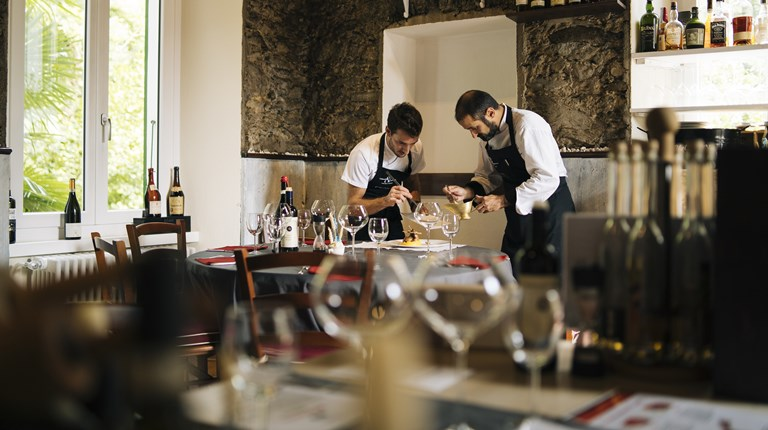 Gastronomy and traditions, Food and wine tours in the Region