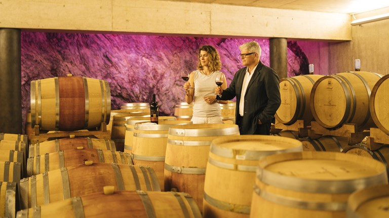 Gastronomy and traditions, Wine cellars and breweries of the Region