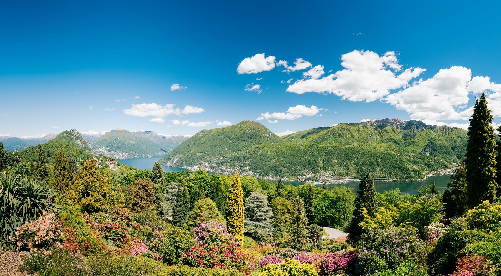 Lake and nature, View of the Lake Lugano from Parco San Grato above Carona