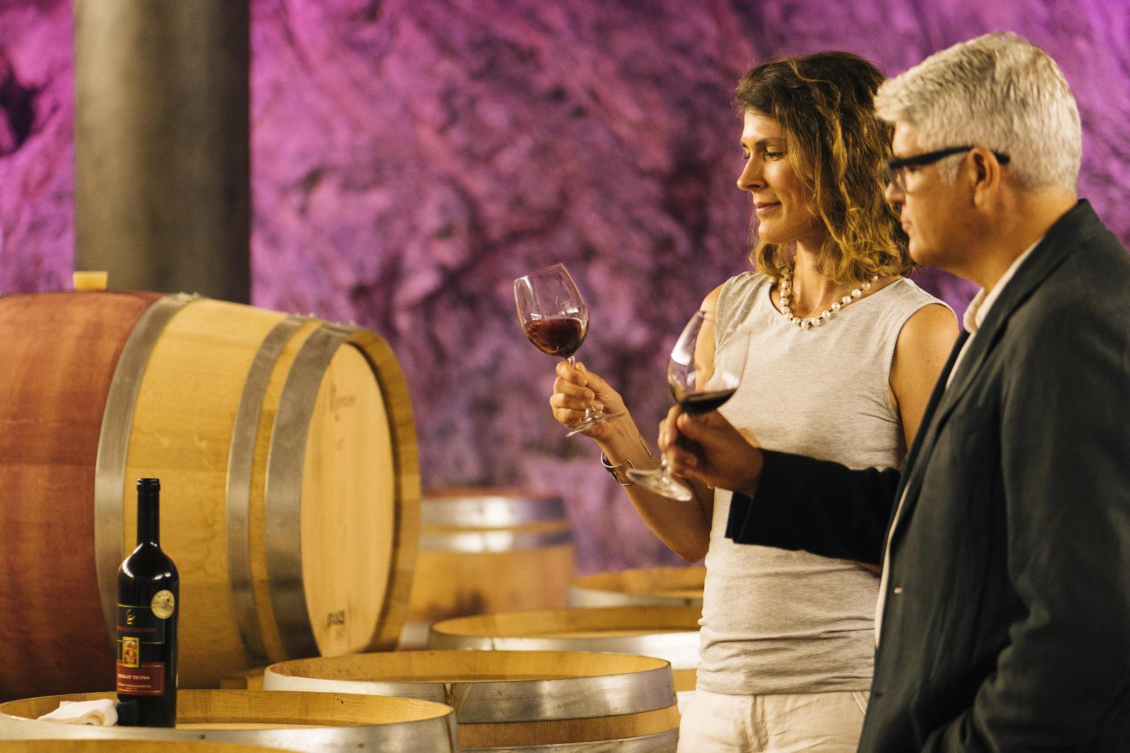 Gastronomy and traditions, Visit to the wine cellars of the Region
