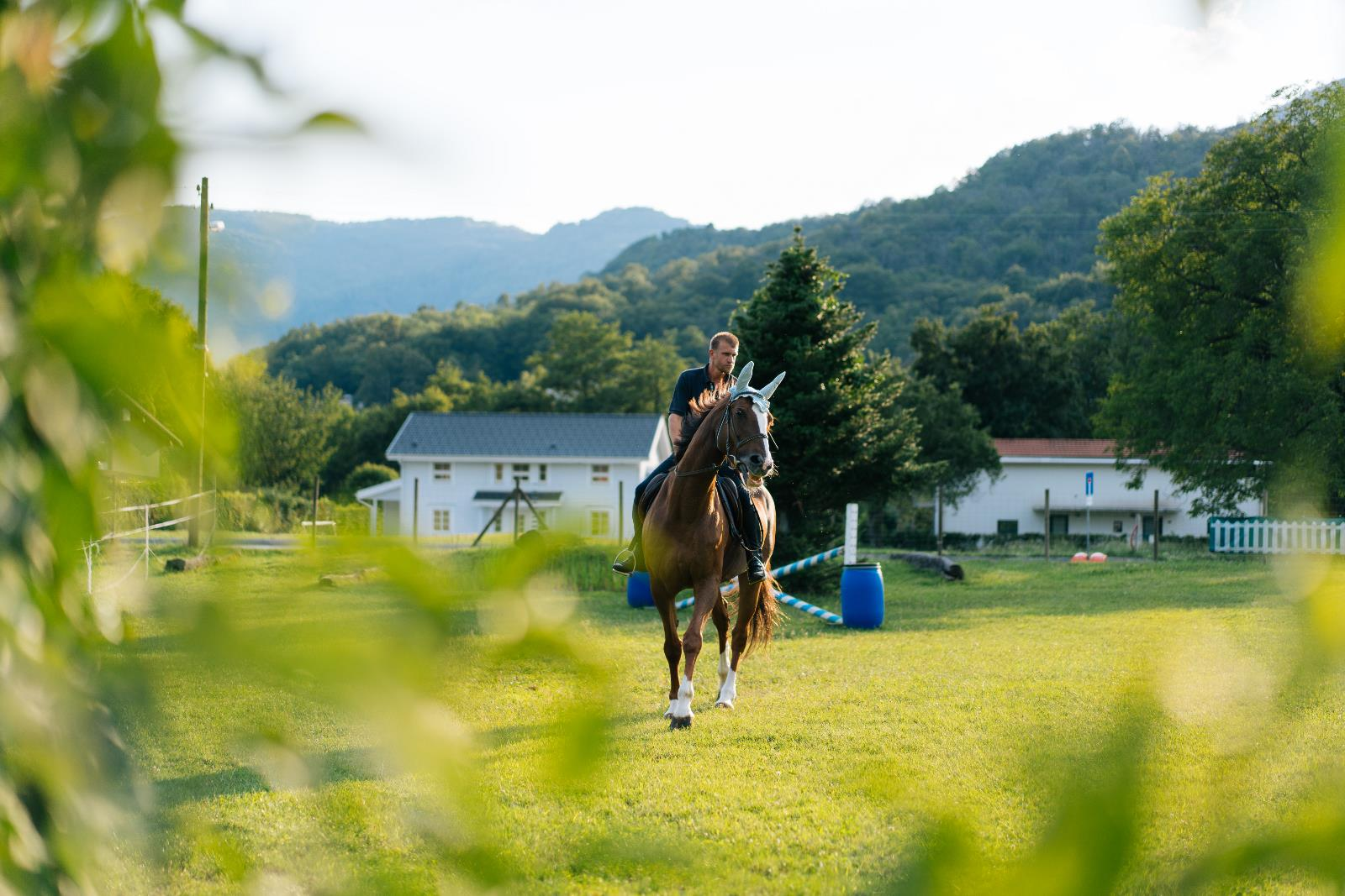 Sport and leisure, Horse riding