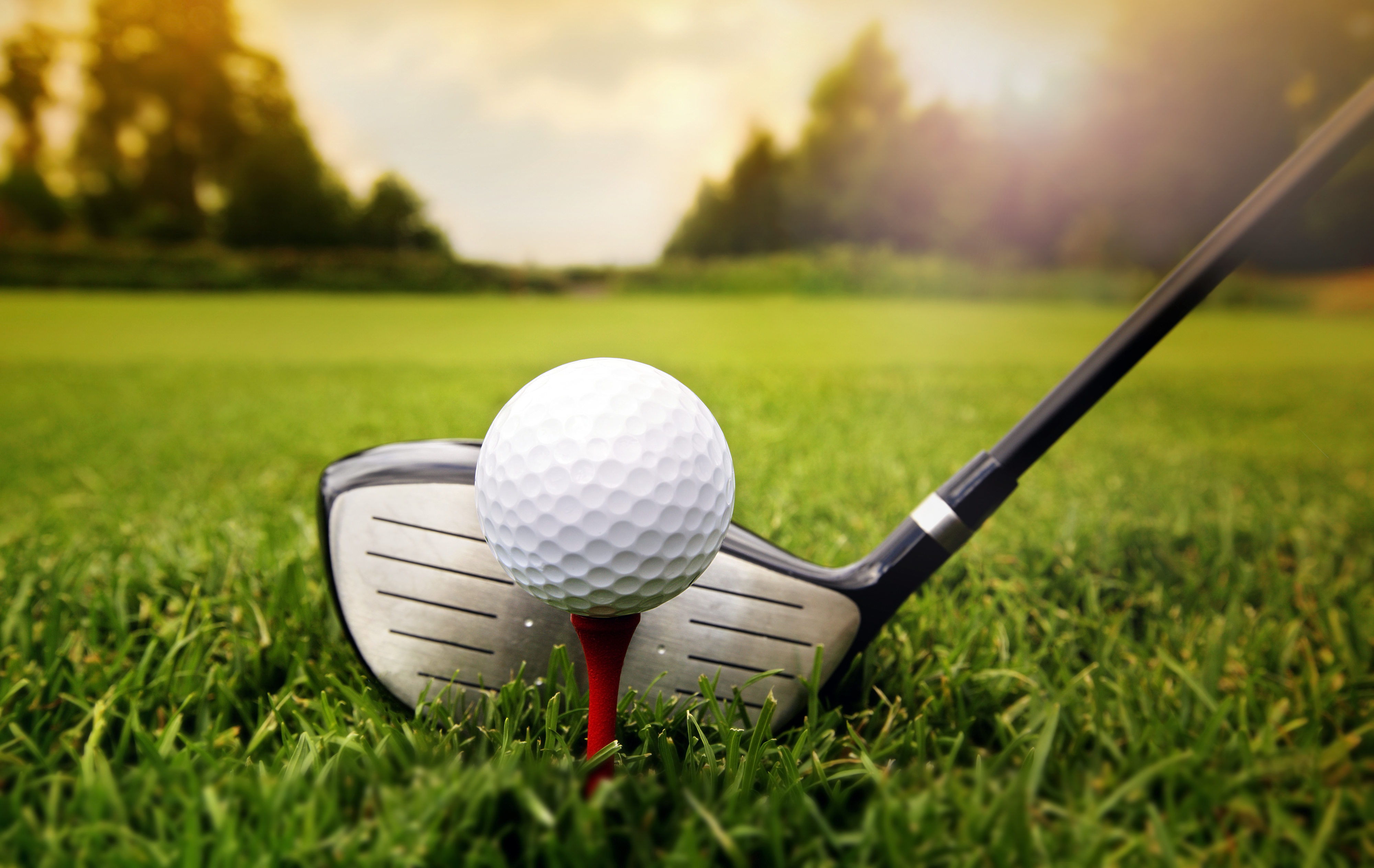 Sport and leisure, Golf courses in the Region